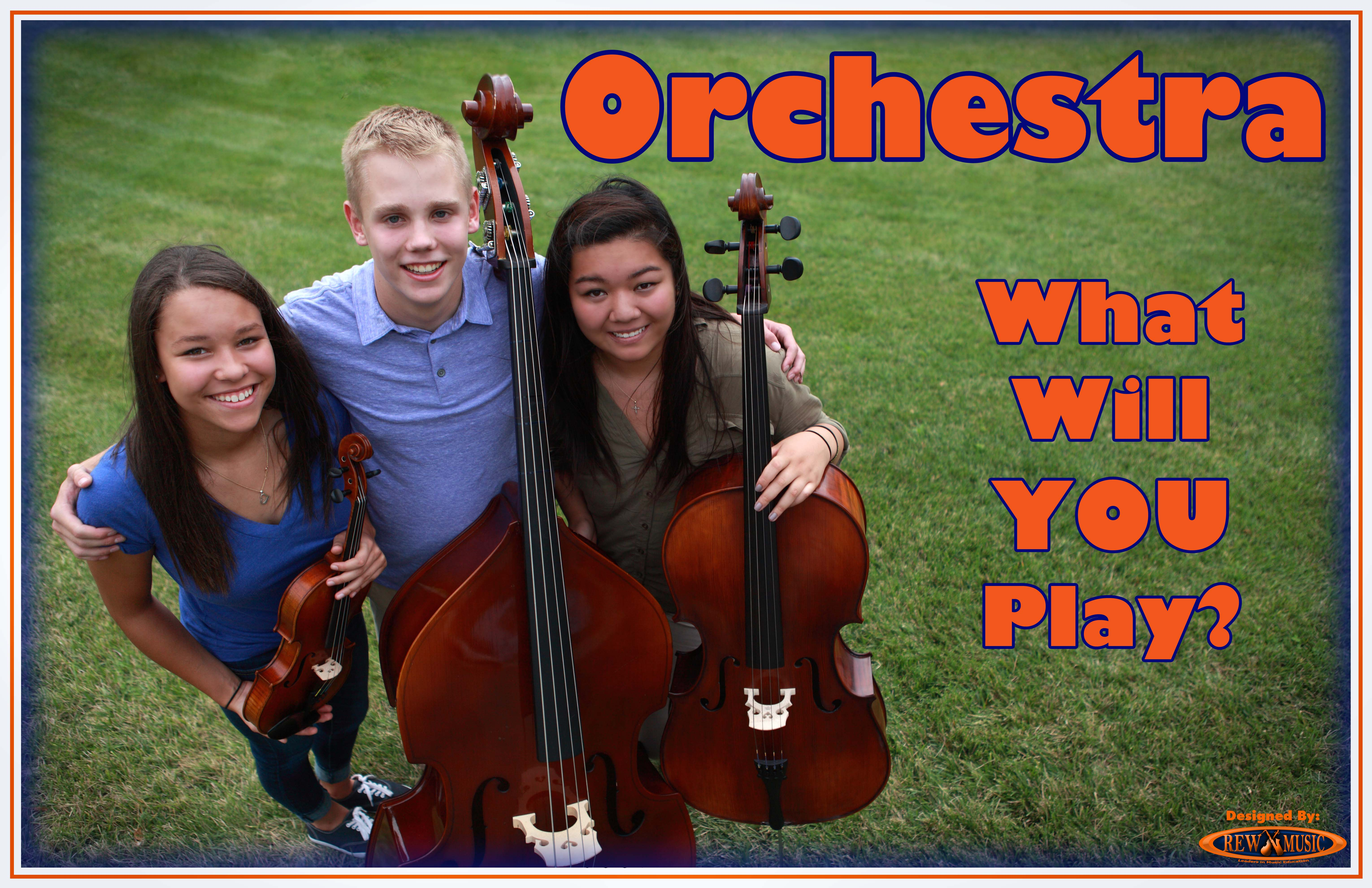 Join the School Orchestra Strings What Will You Play Group Grass